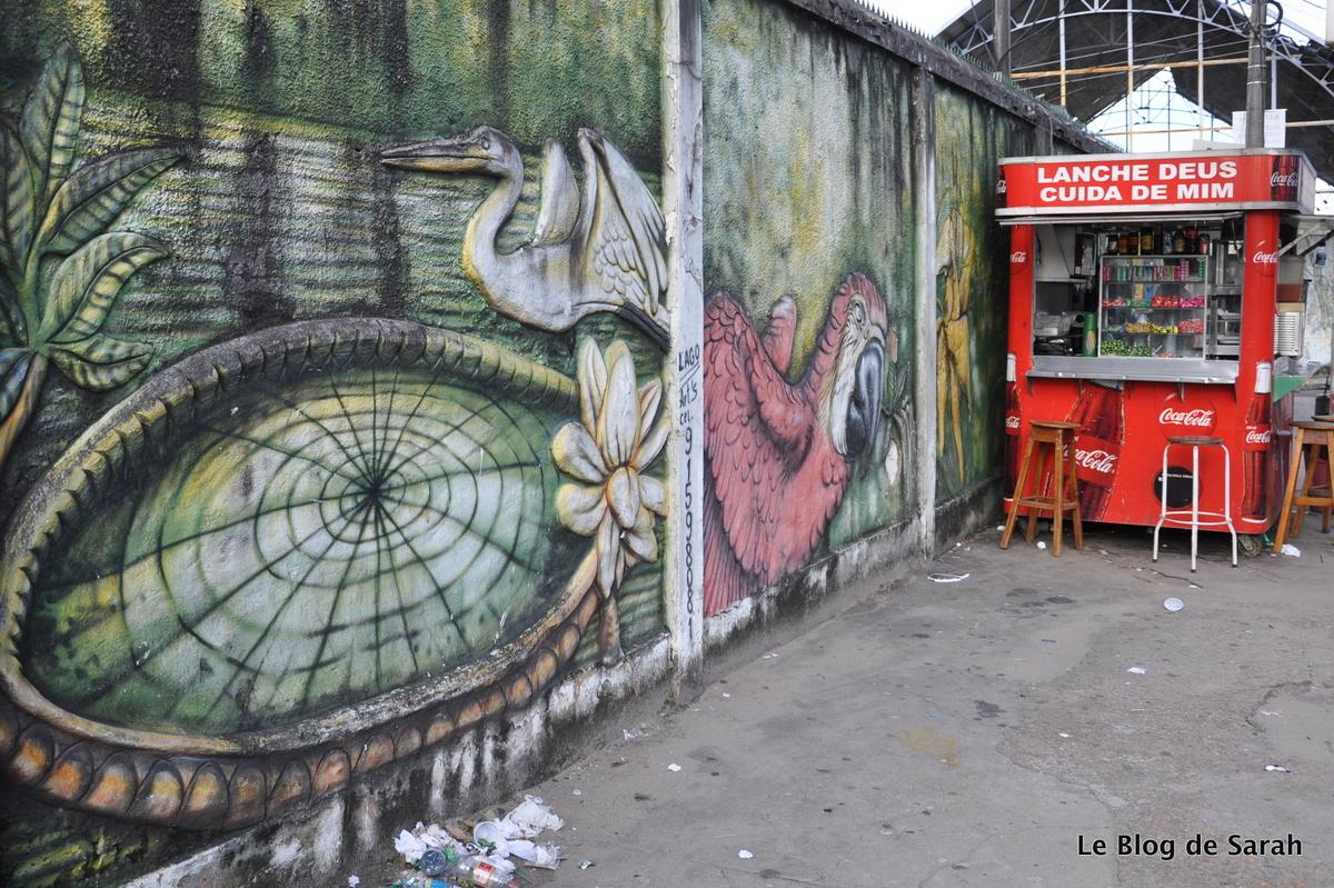 arte callejero-manaus-selva-Brasil