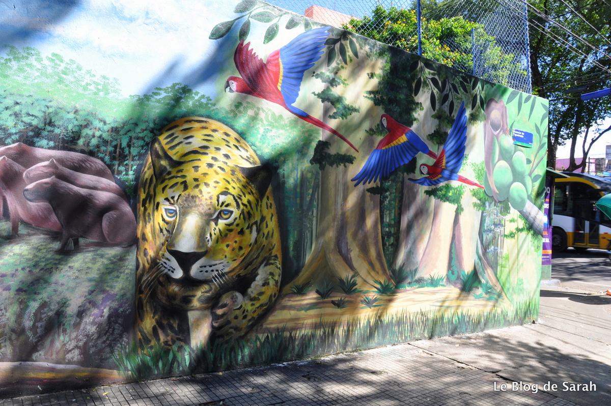 Arte callejero en las paredes de Manaus, av Getulio Vargas