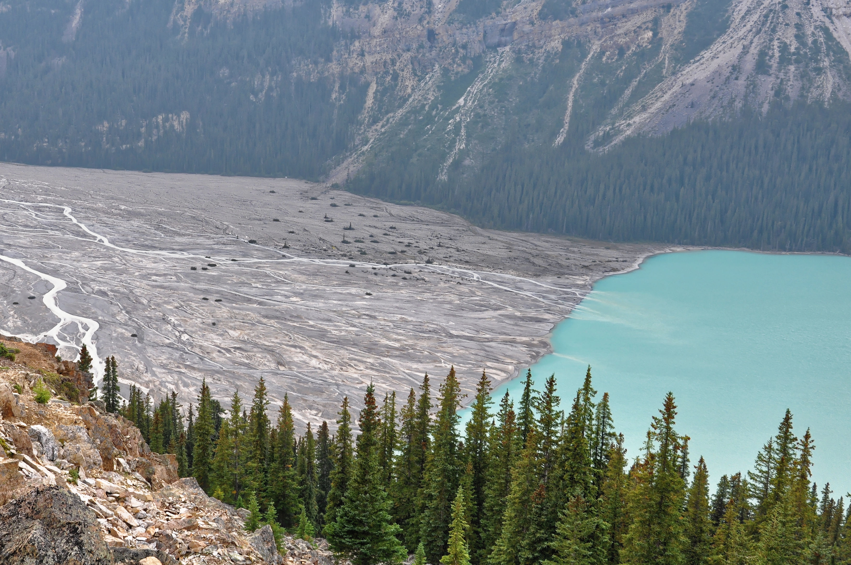 Glaciar Peyto en las Montañas Rocosas en Canadá