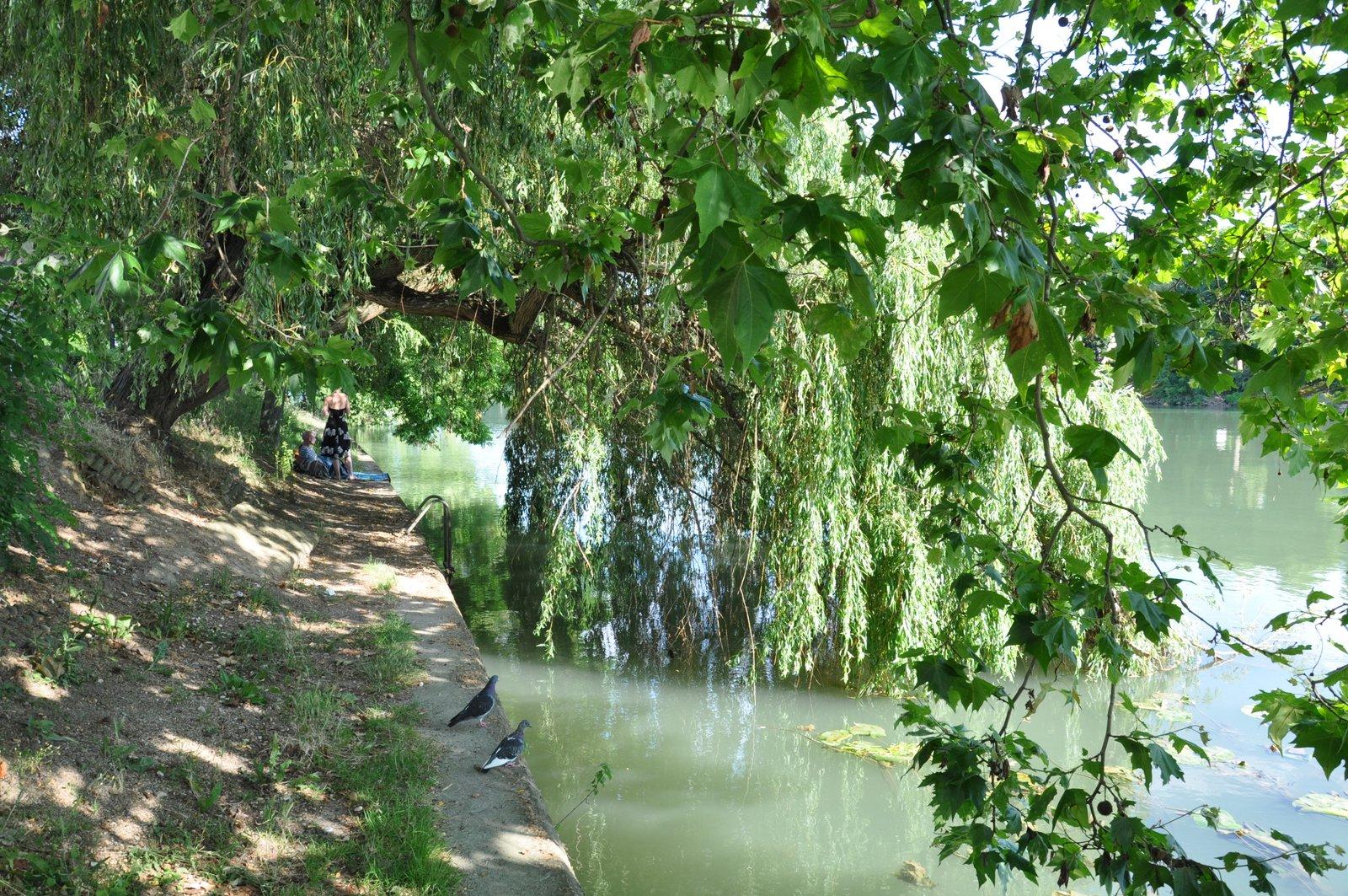 joinville-le-pont-bords-de-marne