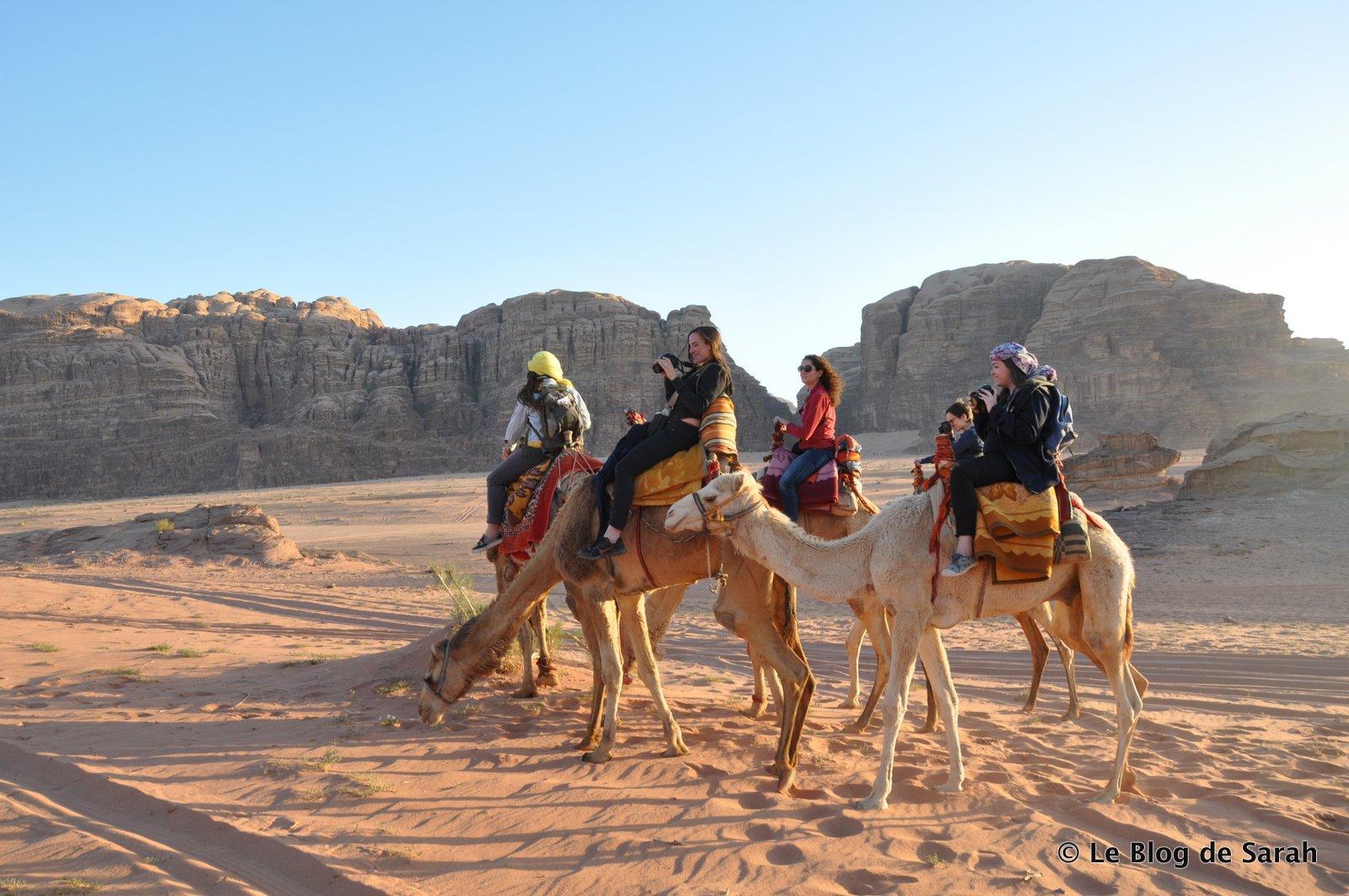 jordan desert camel wadi rum