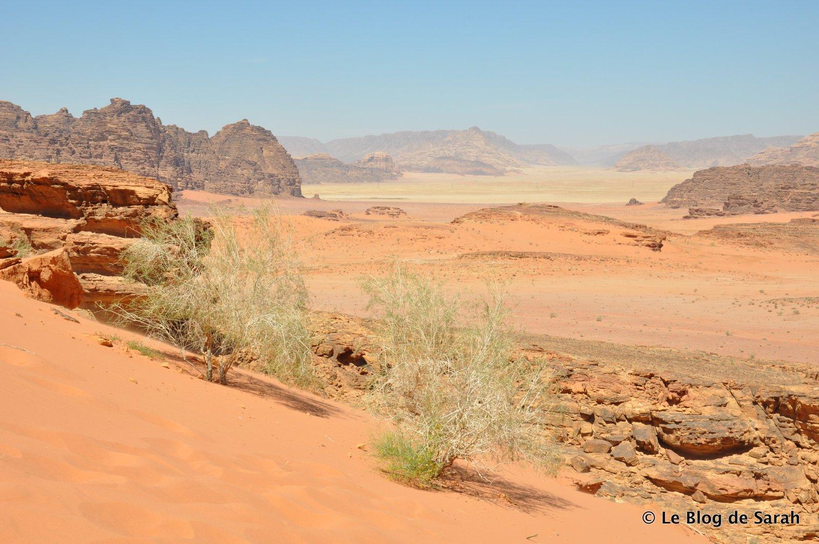 jordan desert wadi rum