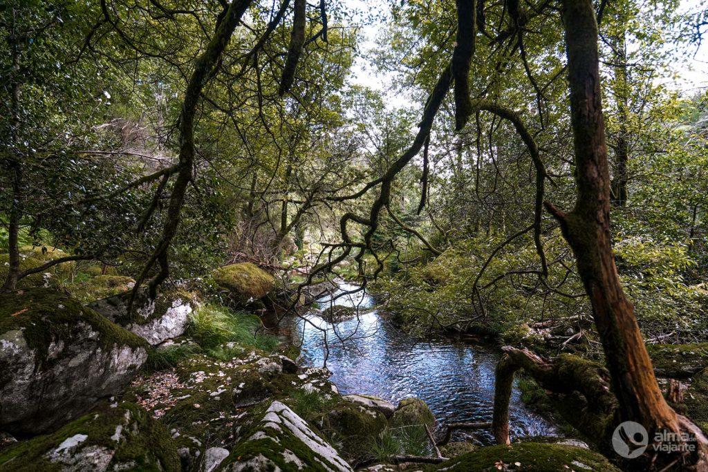 Lagunas de Travanca, Gerês