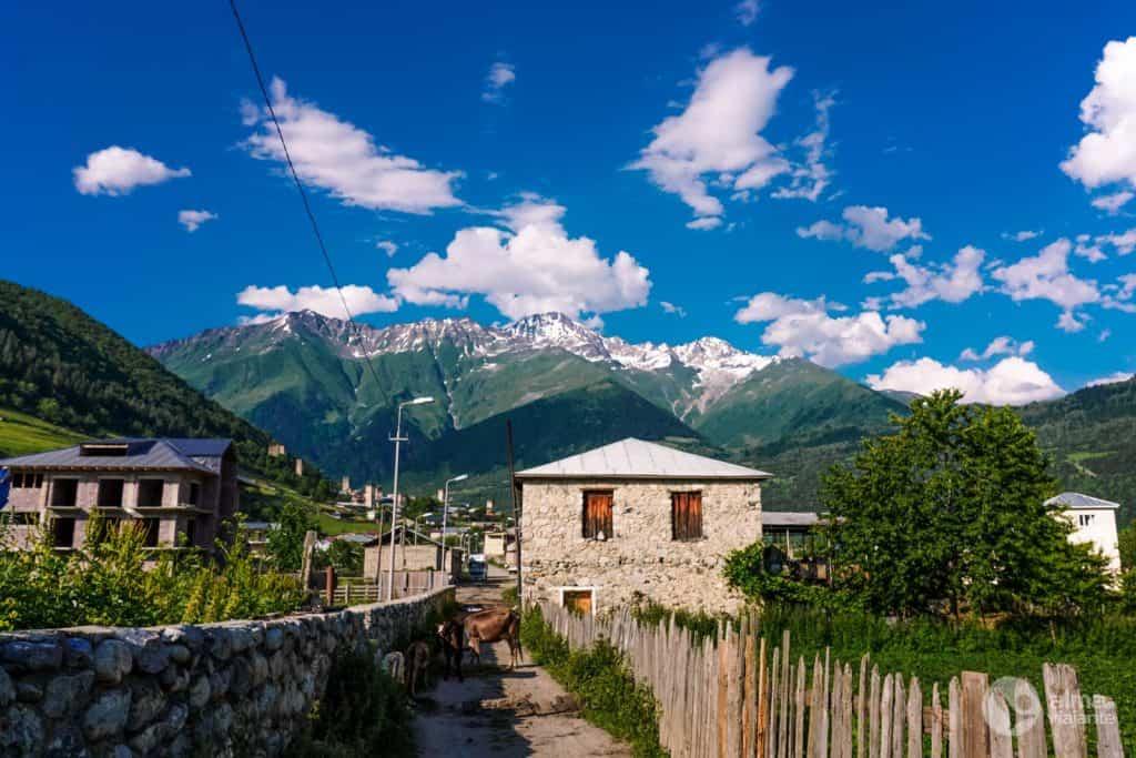 Distrito de Laghami, Mestia