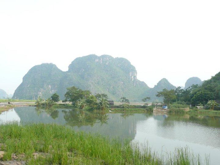 Campos de arroz y picos cársticos en Ninh Binh