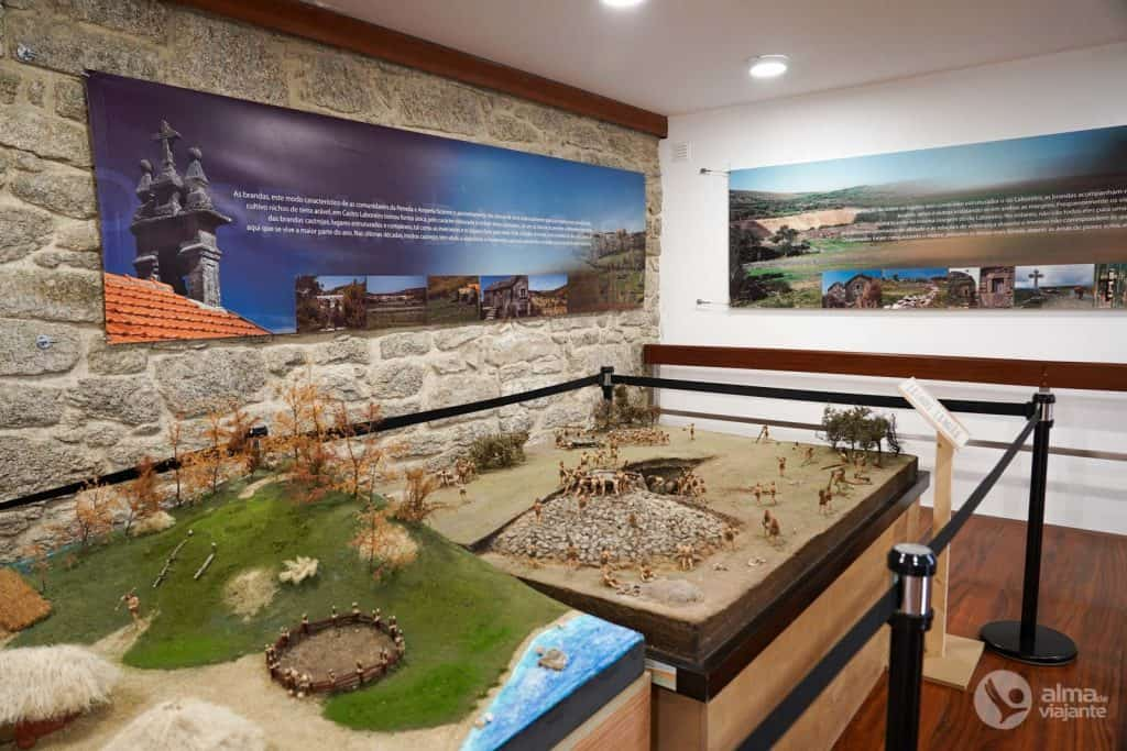 Exposiciones del Centro Museo Castro Laboreiro