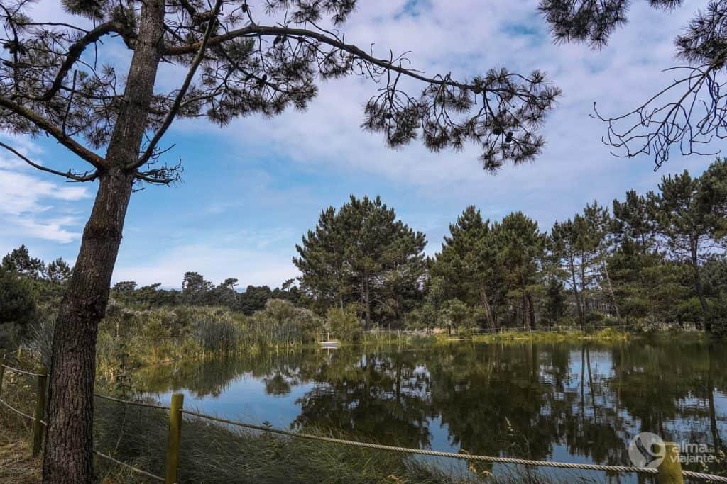Parque Buçaquinho, Cortegaça