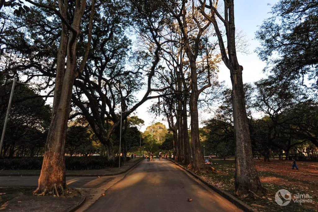 Tours en São Paulo: Parque Ibirapuera