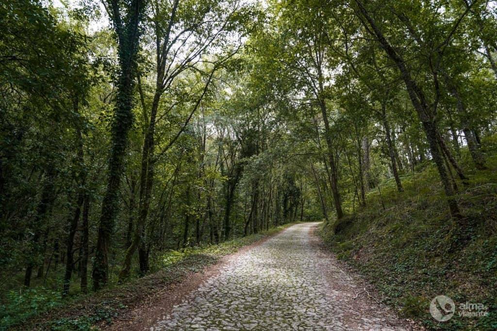 Acceso a las Rutas Marginales Ferroviarias del Río Miño