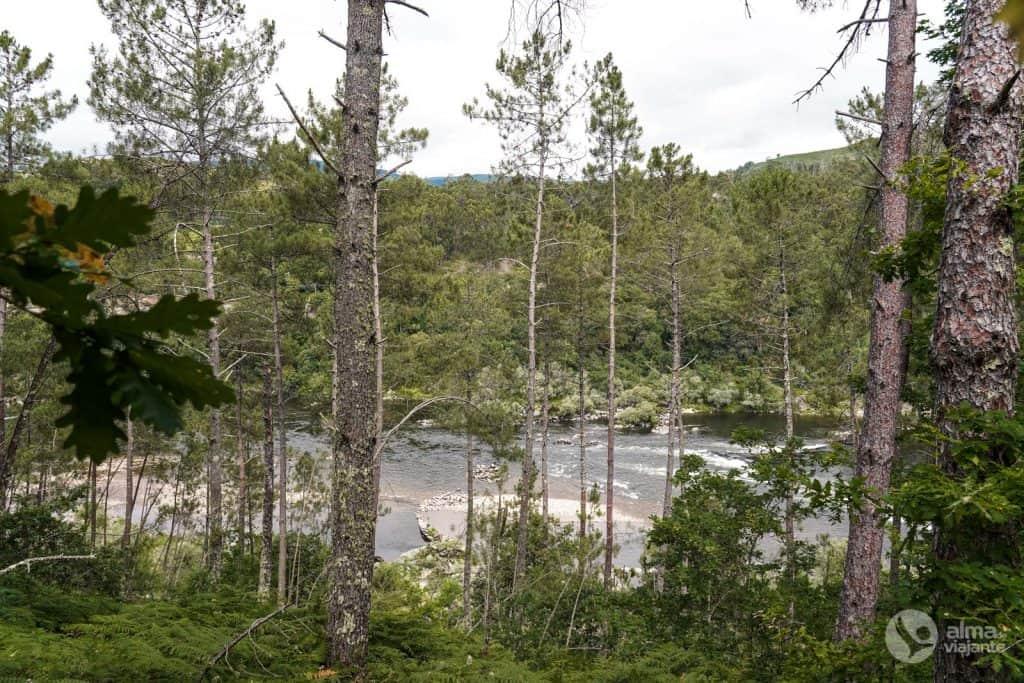 Pesca en el río Miño