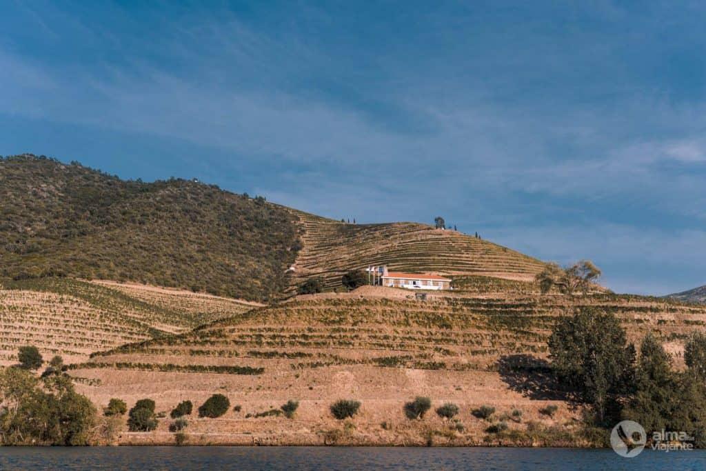 Quinta de Ventozelo, Ervedosa do Duero