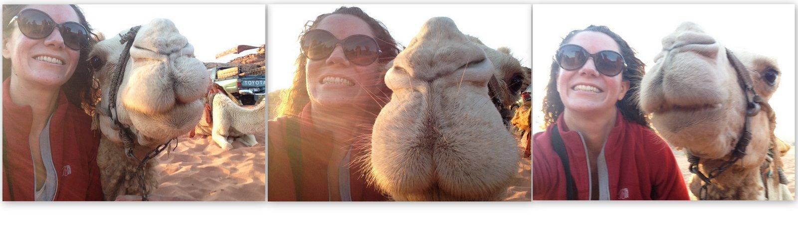 toma un selfie camello jordan