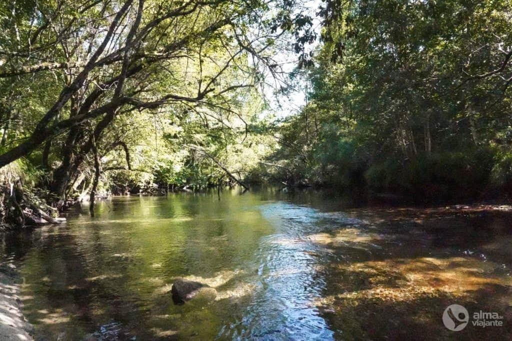 Bañarse en el río Laboreiro