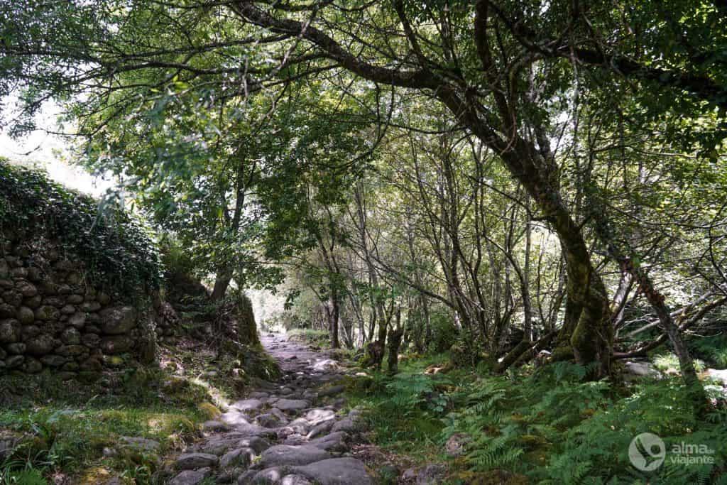 Camino de piedra en sistelo