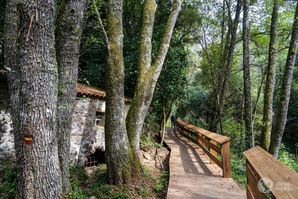 Pasarela de madera junto al río Alge