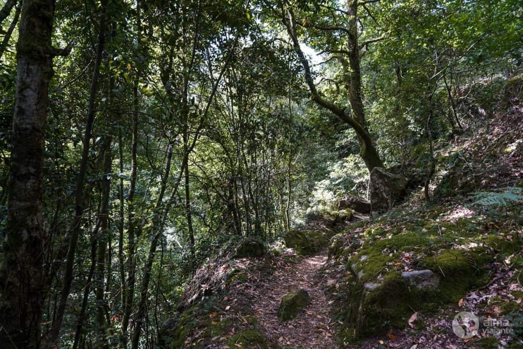 Rutas marginales del río Miño, Melgaço