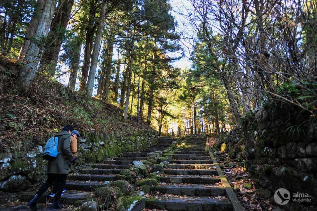 Qué visitar en Nikko: camino al santuario de Toshogu