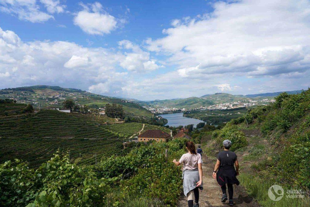 Ruta del Vino de Oporto, Lamego