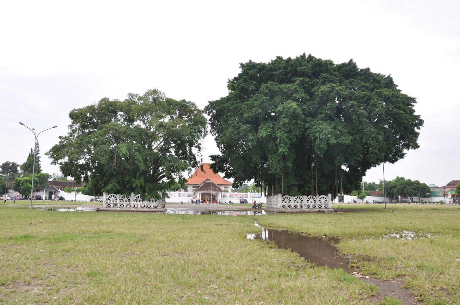 visita-yogyakarta-banyan-tree