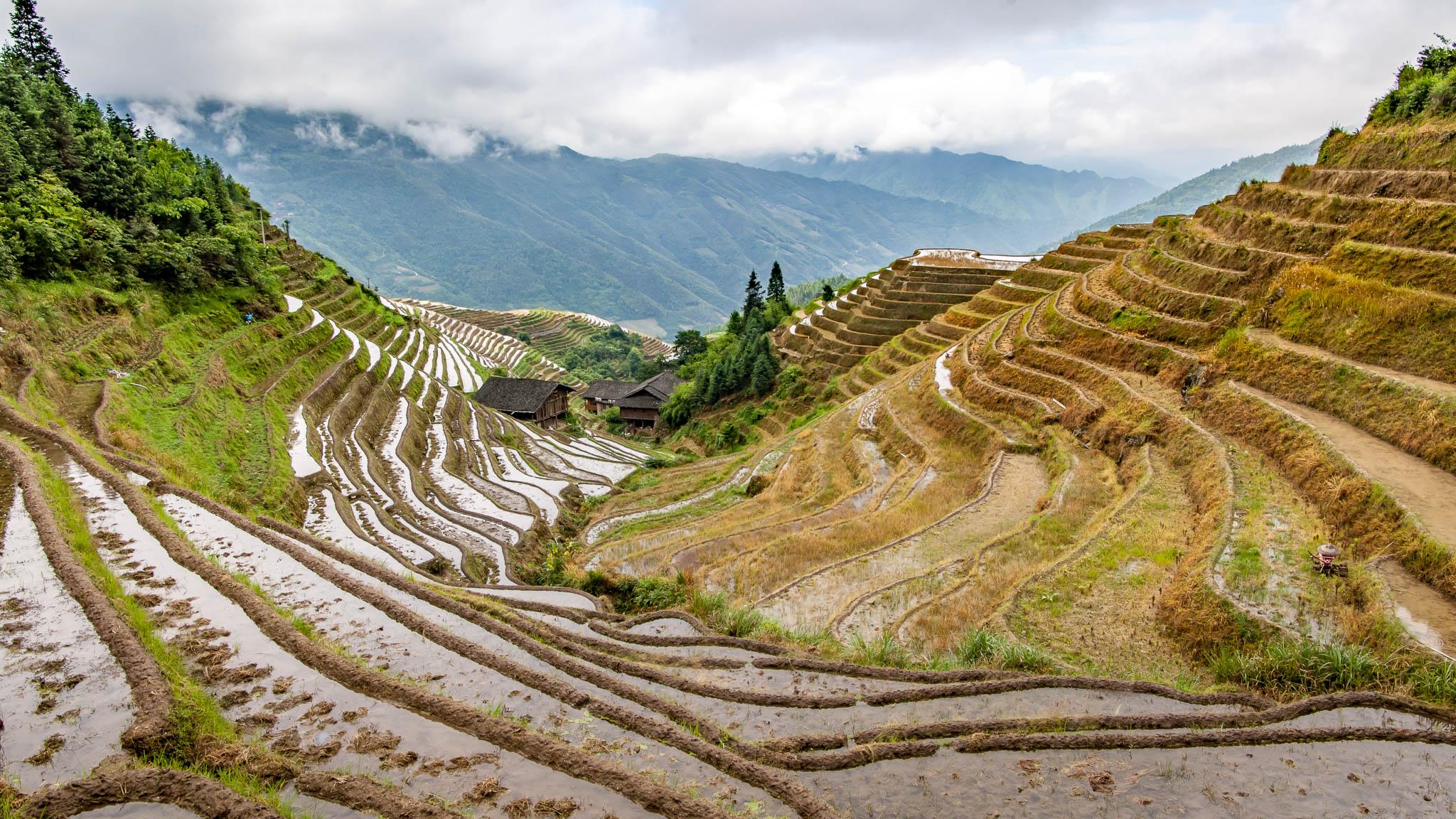 Longji China