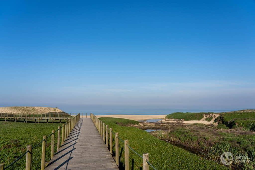 Paisaje regional protegido de la costa de Vila do Conde y reserva ornitológica de Mindelo