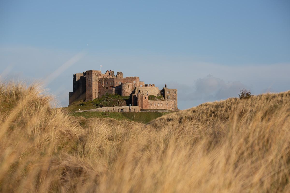 gran castillo visto a través de la hierba larga en primer plano
